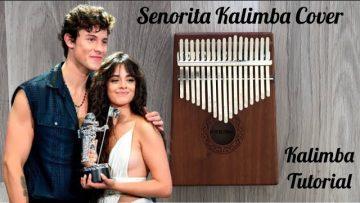 Senorita Kalimba Cover | Kalimba Tutorial | Kalimba Tabs